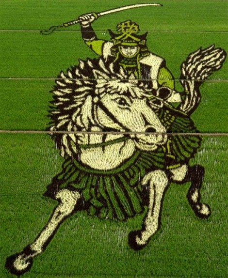 rice-art-samurai